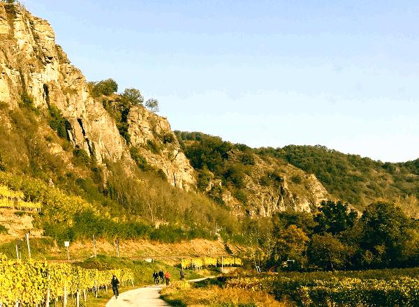 de Weißenkirchen à Spitz