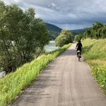 Donauradweg Passau Wien bei Arnsdorf