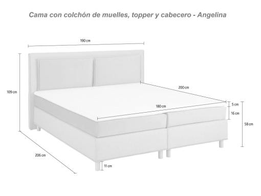 Dimensions of the Angelina bed
