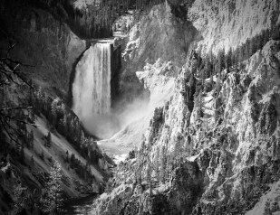 Lower Falls of the Yellowstone from Artist Point