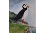 puffin-scaled-landscape
