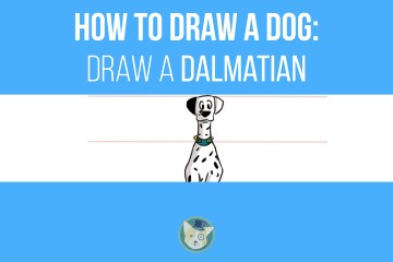 How to Draw a Dog - Draw a Dalmatian Step by Step