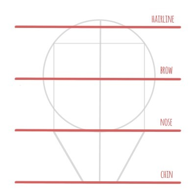 Here are the basic proportions that you need to know when drawing a face!