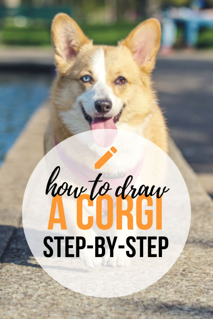 How To Draw An Adorable Corgi Step by Step!