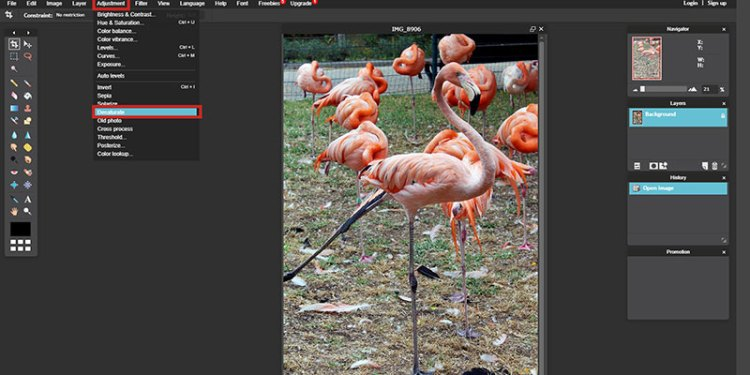 On Pixlr you can Desaturate your images to see the values of your images!