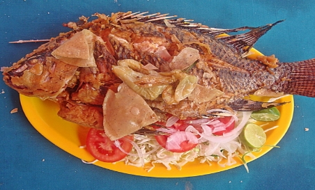 The best tasting tilapia anywhere. Right here in San Miguel de Allende.