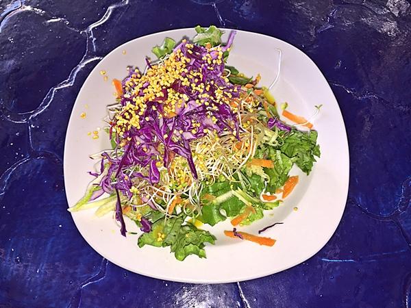 sabores mole salad