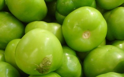 In pursuit of the tastiest tomatillos.