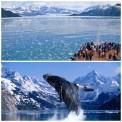 Glacier Bay, Alaska. AMÉRICA