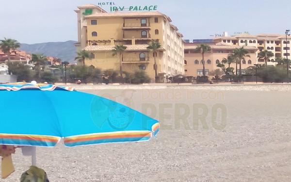 playa castillo sohail (3)
