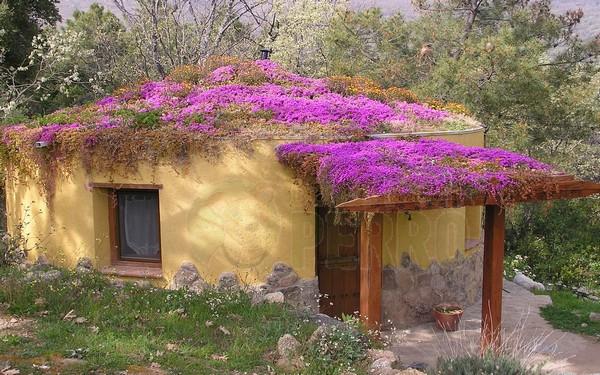 Ecopangea, Cáceres