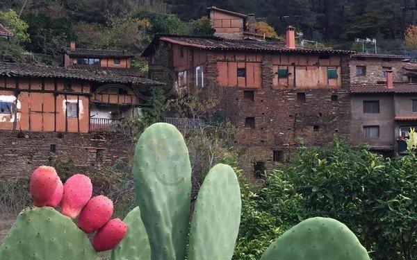 casa manadero (7)