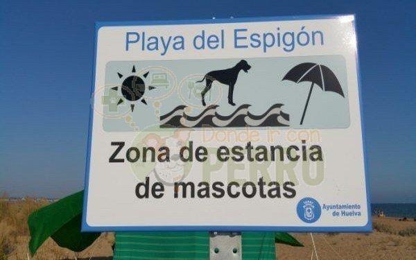 playa del espigón admite perros en Andalucía