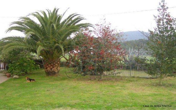 casa de aldea mariluz (4)