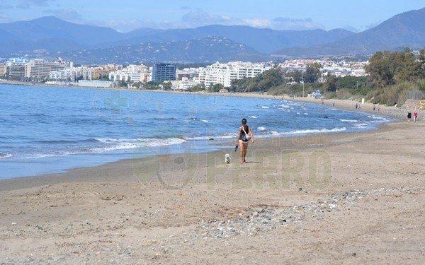 playa de el pinillo canina en Málaga