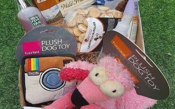cajas para perros personalizada