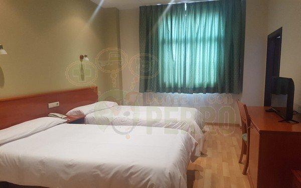hotel arcea villaviciosa (1)