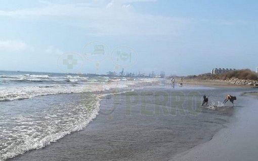 Playa Canina de Alboraya