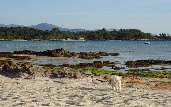 playa de bernalle, muros (2)