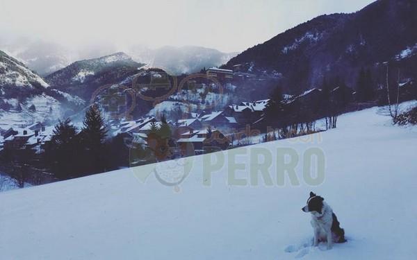 hotel Arbella, Andorra (7)