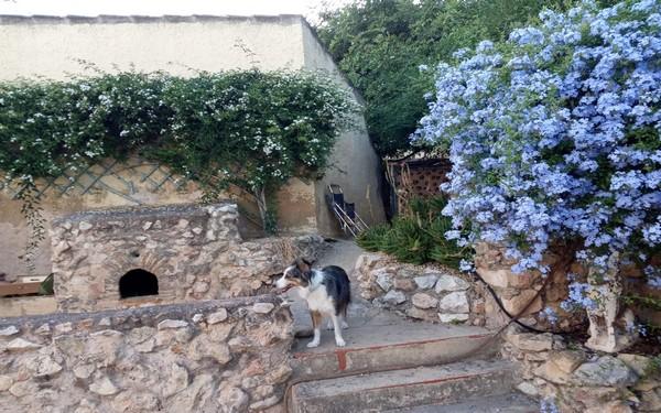 Casa Rural La Clau, Alacant