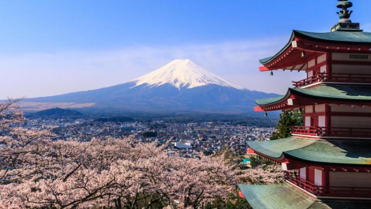 japon-vuelve-a-mirar-al-campo-revivir-la-agricultura-para-recuperar-la-felicidad