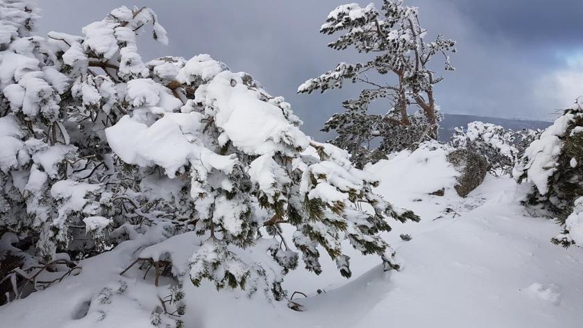 20160117_133738 (Copy) nieve