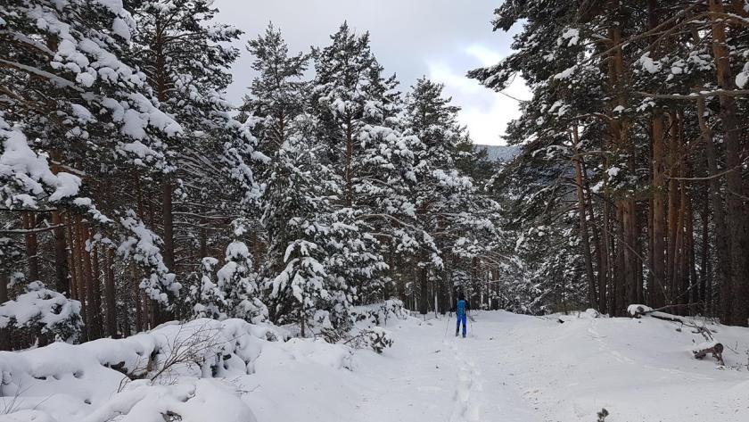 20160117_144128 (Copy) nieve