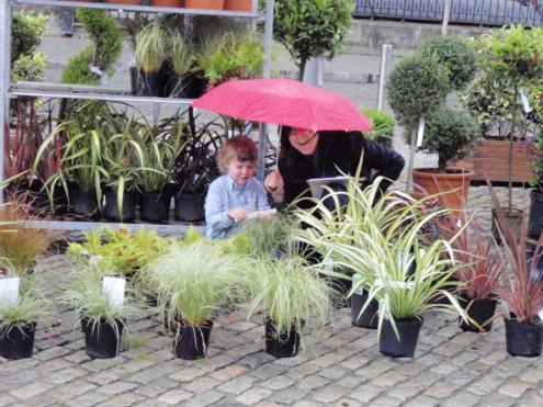 peter donegan landscaping - urban garden smthfield