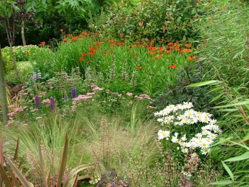 peter donegan landscape contractor garden design dublin ireland