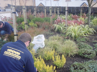 peter donegan landscape garden maintenance swords dublin