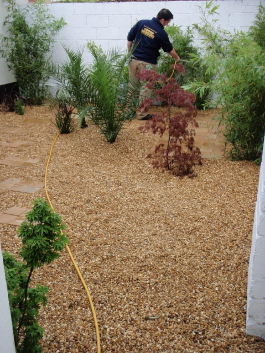 small-garden-design-pebble-paving-plants