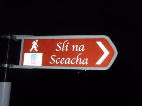 signage in irish