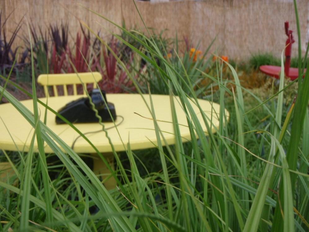 smithfield-festival-dublin-09-show garden peter donegan