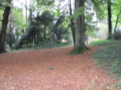 kilkenny-castle-gardens-24