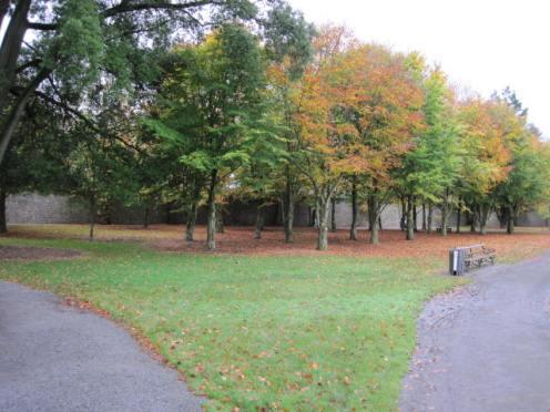 kilkenny-castle-gardens-51