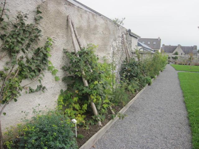 rothe-house-gardens-kilkenny-10