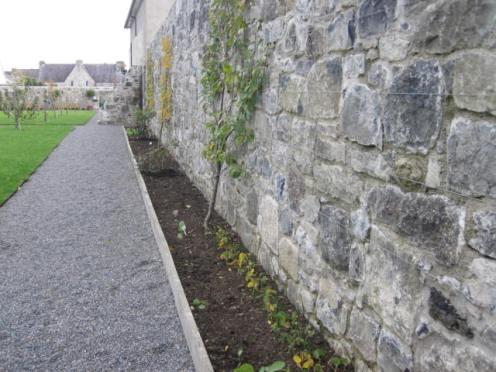 rothe-house-gardens-kilkenny-12