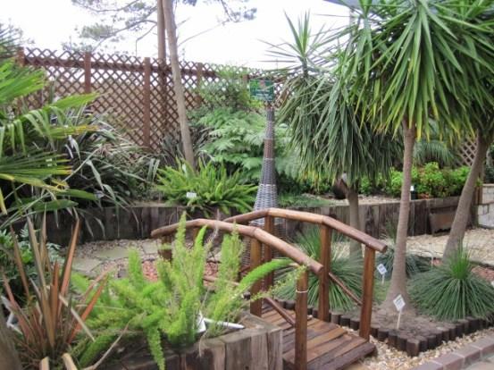 cape-garden-centre-114