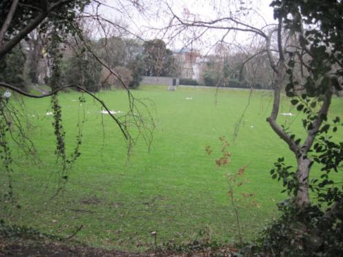 iveagh gardens (42)