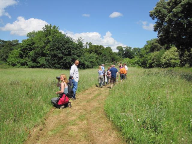battle of the boyne site 051