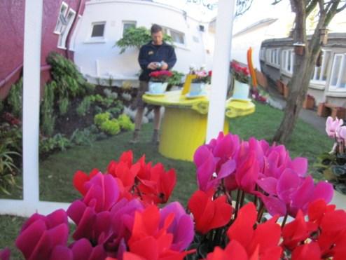 cappagh hospital garden (8)
