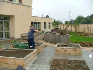garden in progress