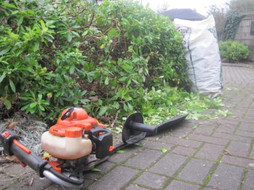 gardening dublin 004
