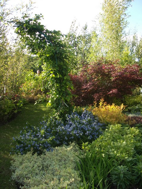 peter donegan landscaping (116)
