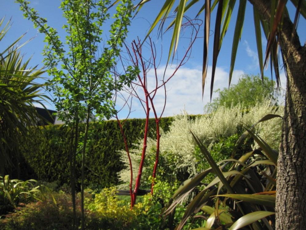 red garden feature