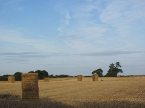 fields ballyboughal