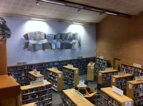 fingal library
