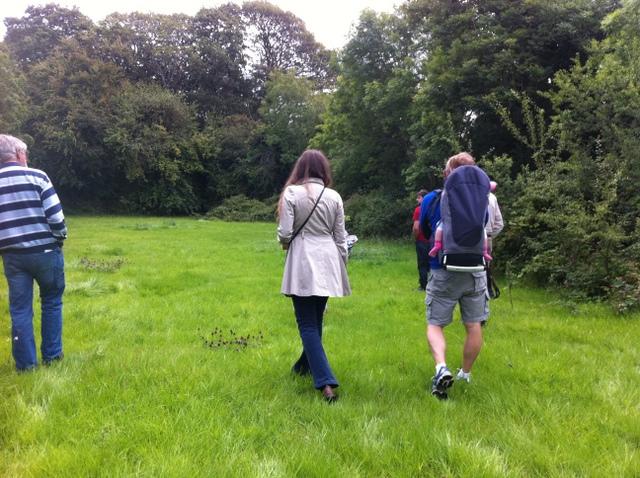 hedgerow walk
