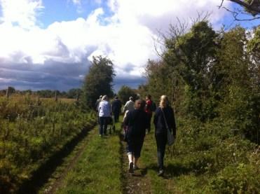 hedgerow walk heritage week 2011 (5)